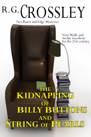 http://www.53rdstreetpublishing.com/books/the-kidnapping-of-billy-buttons-and-string-of-pearls/