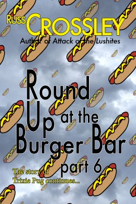 Round up at the Burger Bar – Part 6